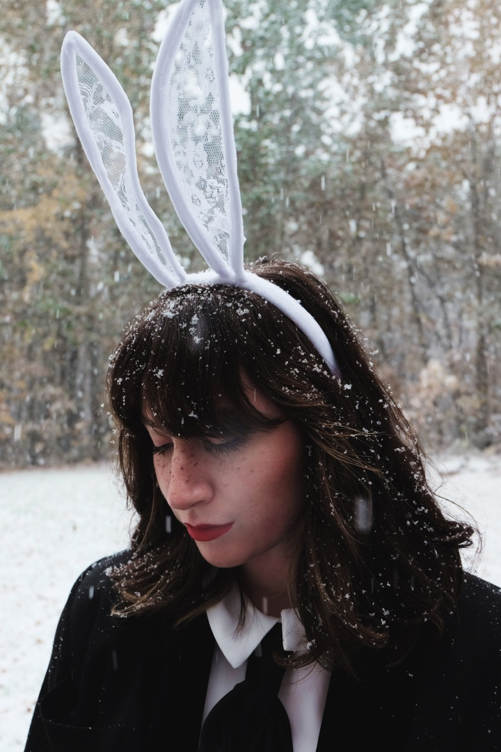 rabbit1
