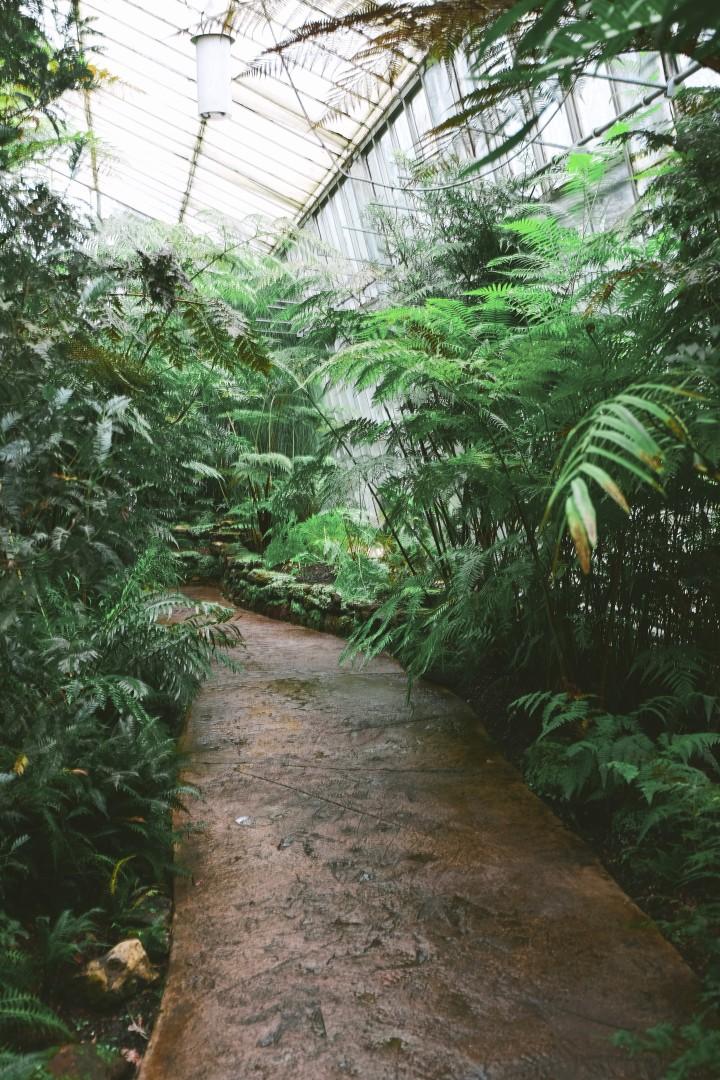 Royal Botanic Garden, Edinburgh {Part2}